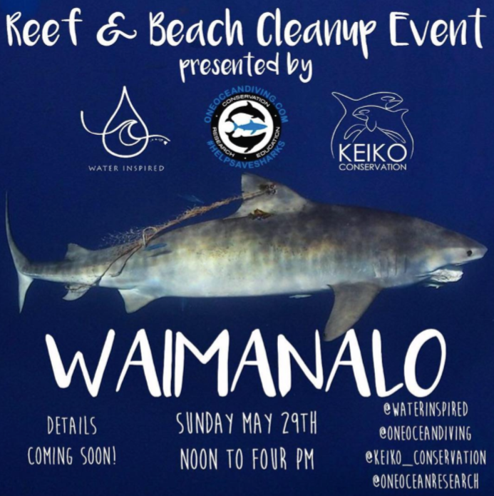Waimanalo Beach Clean Up Keiko Conservation One Ocean Diving Water Inspired