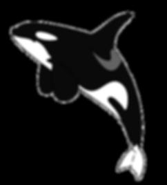 Killer-whale-orca-die-cut-vinyl-decal-pv