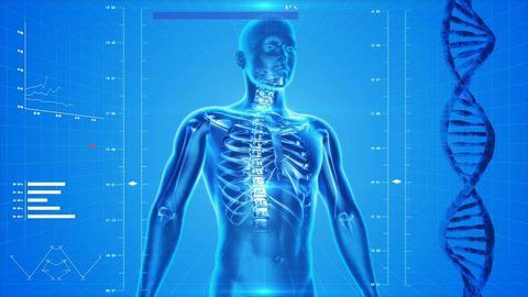 發現CB3受體可能是人類歷史的醫學突破