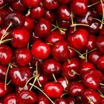 Sweet Cherry U-Pick