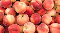 top-quality-georgia-peaches.jpg