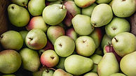benefits-of-pears-1296x728-feature.jpg