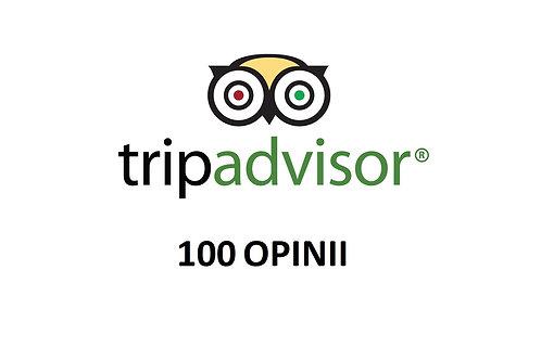 100 OPINII TRIPADVISOR