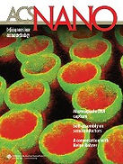 acs_nano_cover_august2007.jpg