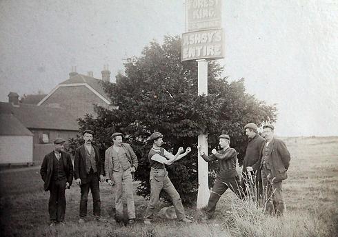 Blackheath_Yew_Tree_Fists.webp