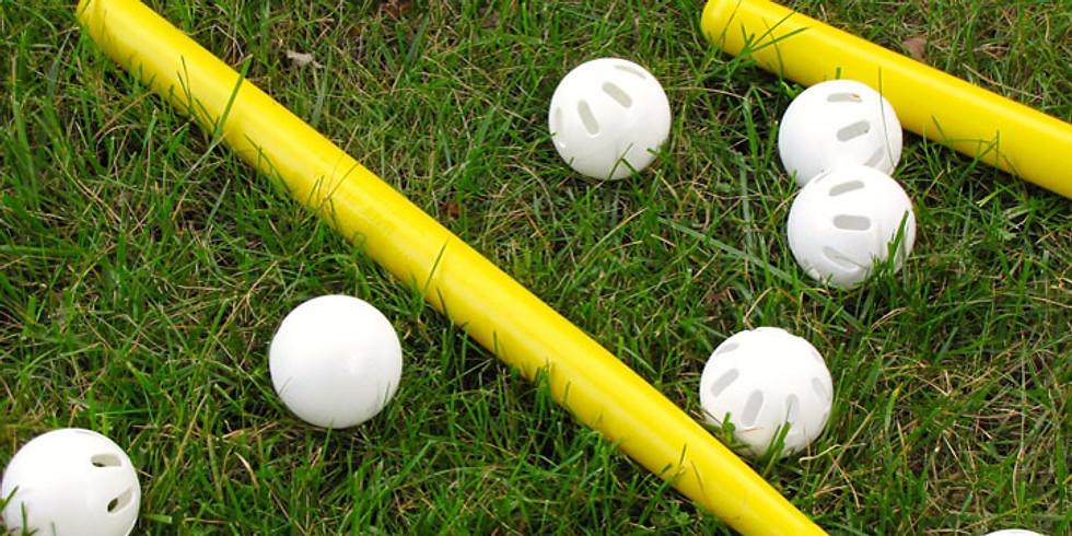 Wiffle Ball Game