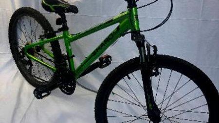 Ten Speed Mountain Bike