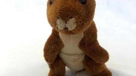 Kangaroo Doll