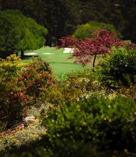 Gardens surrounding 1st tee