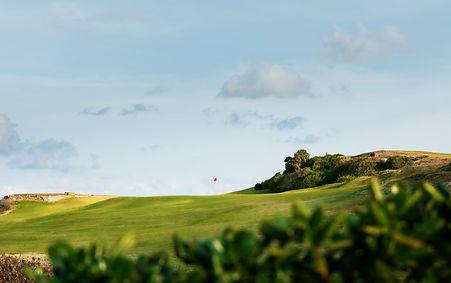 Randwick Golf Club