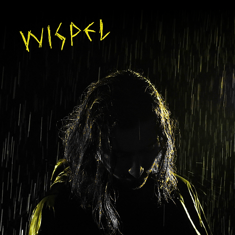 wispelcover.png