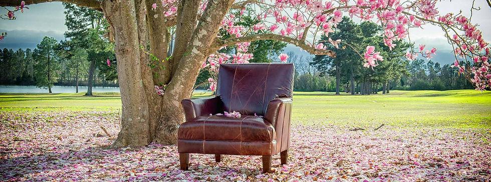 8631L-Chair-Monte-Cristo-Chestnut-H2.jpg