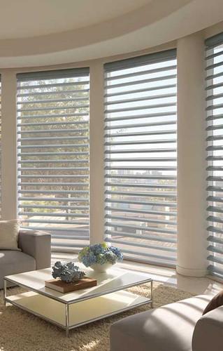 Hunter Douglas Windows by Catrina's Interiors