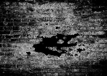 Briques Grunge Transparent