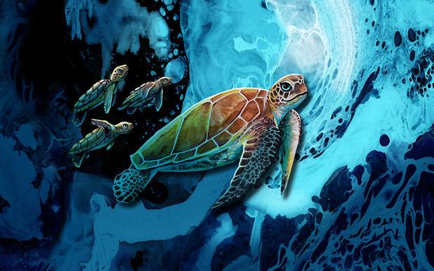 Turtle_Babies_Image_Full_SM.jpg