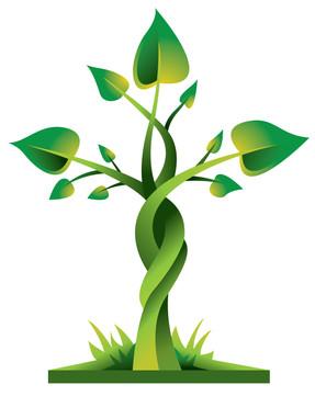 Cross_Plant.jpg