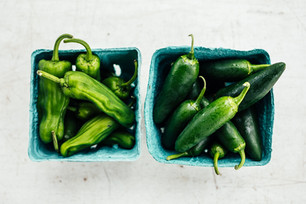 Succession Planting and Harvesting the First Peppers
