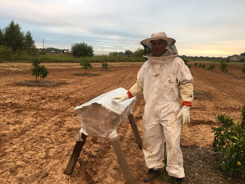 Farmer Keenan with the Harvest Green Bee Hive
