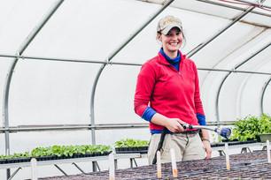 A New Team Member & Harvesting Wasabi Mustard Greens