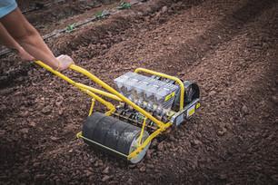 A New Seeder & Harvesting Black Radishes