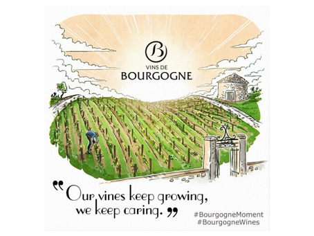Free Online Burgundy Course
