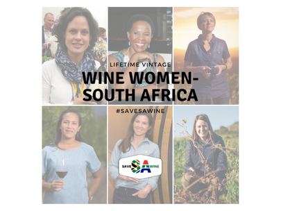 Lifetime Vintage (US) x South African Wine Bundle