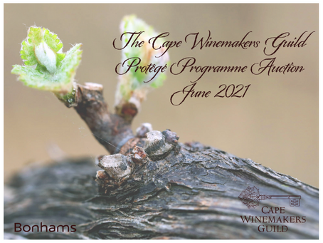 2021 CWG Protégé Programme Auction supports the future of the SA wine industry