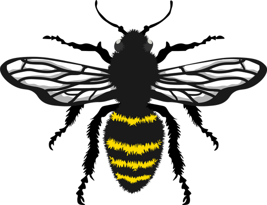 bee1-01.png