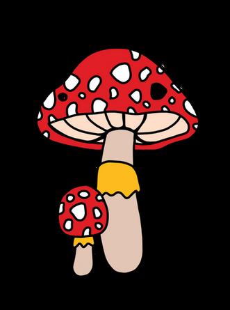 mushrooms-01.png