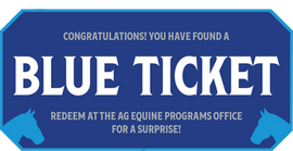 blue ticket.png