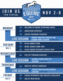 equine experience weekv6-02.png