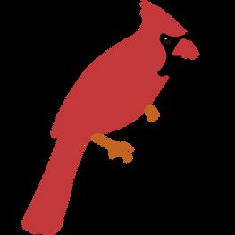 american cardinal.png