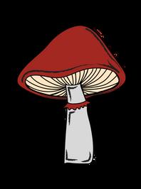 mushrooms-02.png
