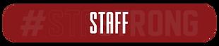 STA tabs - GA staff.png