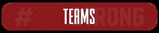 STA tabs - GA teams.png