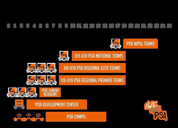 PSA Structure 2020.png