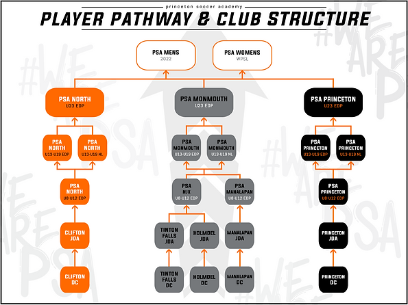 PSA STRUCTURE 2021 new.png