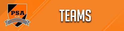 PSA tabs W teams.jpg