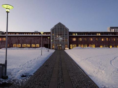 Tromsø, Norvegia - UiT The Arctic University of Norway - Contrabbasso Jazz