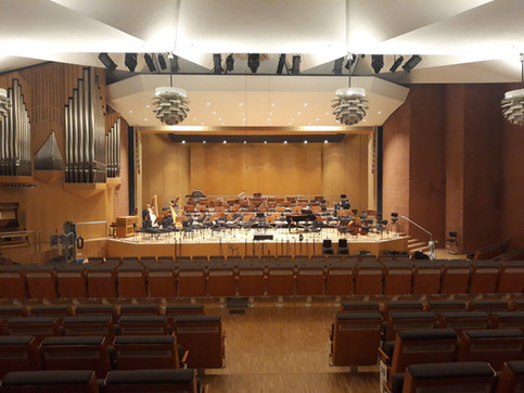 Freiburg, Germania - Hochschule für Musik Freiburg - Arpa