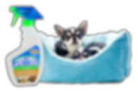 Chihuahuas, Pet Odor Exterminator, fabric freshener spray, Creamy Vanilla
