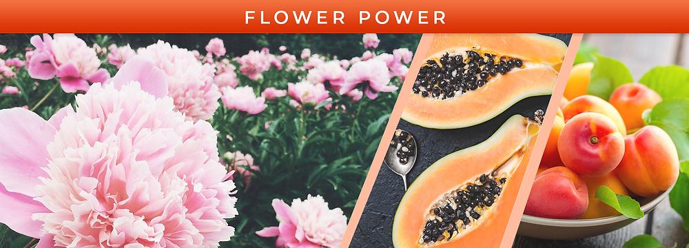 Pink peonies, papaya, and apricot notes
