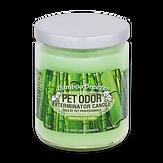 Bamboo Breeze jar candle