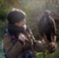 atelier artiste peintre animalier amélie le meur