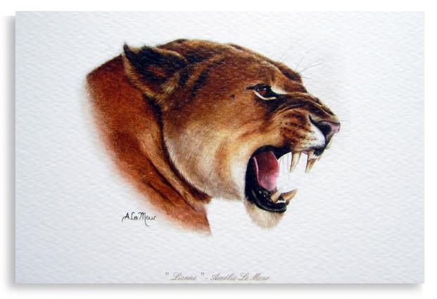 CARTE LIONNE