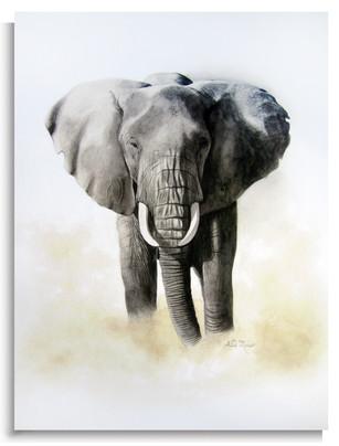 REPRODUCTION ELEPHANT