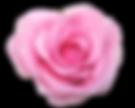 tumblr_n1v1f80AlJ1rdea6qo1_500.png