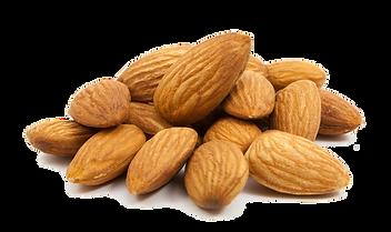 Commercial Dehydratrs Australia Almonds
