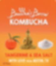 Tangerine Sea Salt Buddhas Brew Kombucha