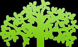 herbhub logo.png